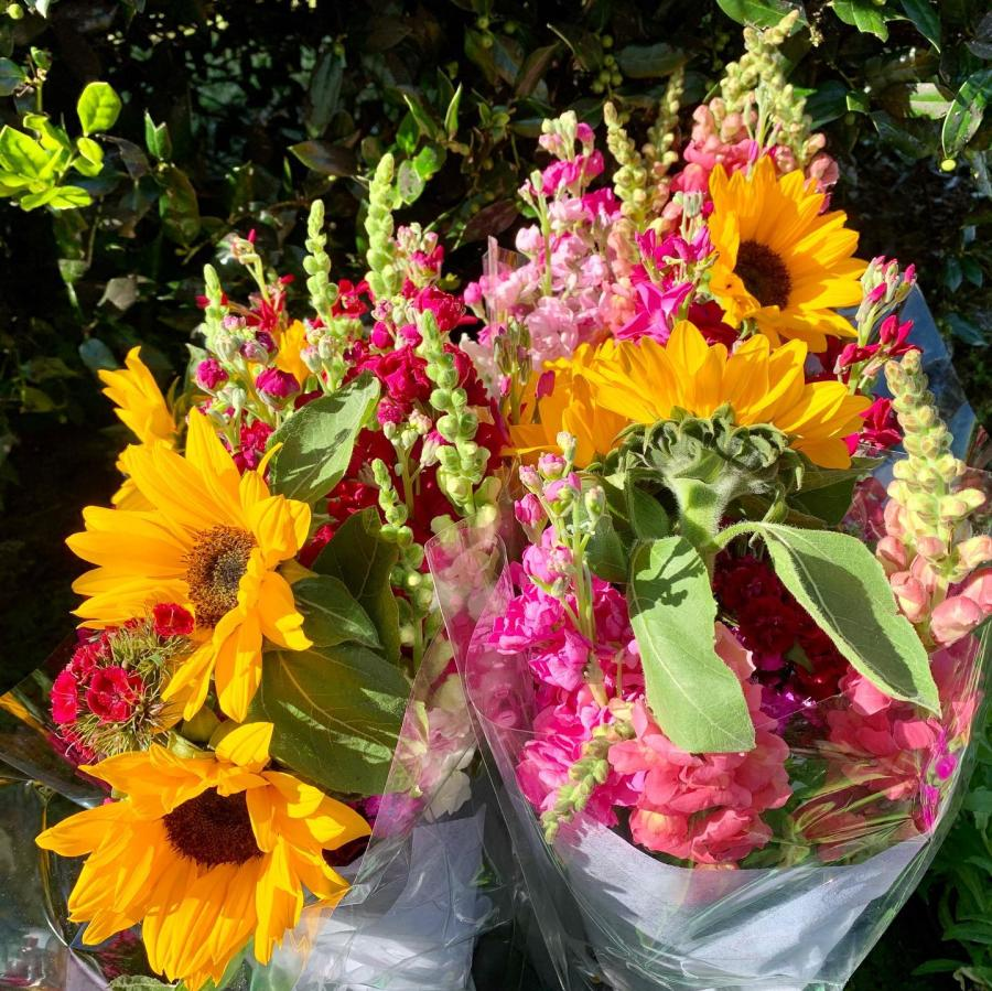 Fresh flowers at West End Farmers Market