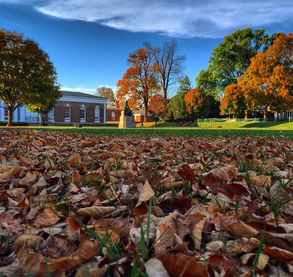 UVA Grounds in Autumn