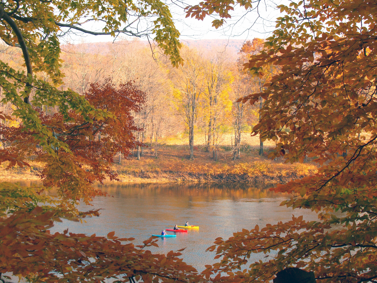 Enjoy a fall kayak ride down the Delaware River