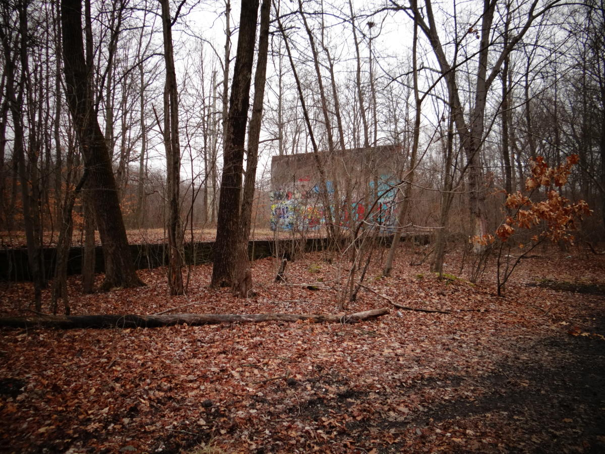Delhaas Woods Ruins Foundation w/ Graffiti