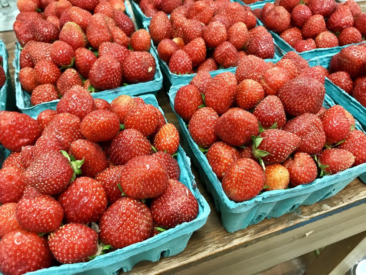 Schramm Farms strawberries