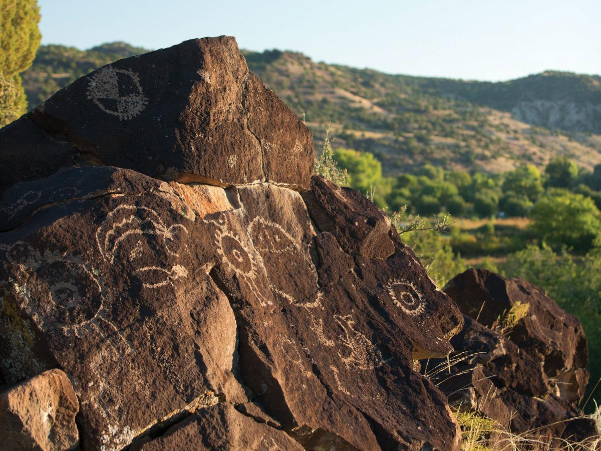 Mesa Prieta Petroglyph Project