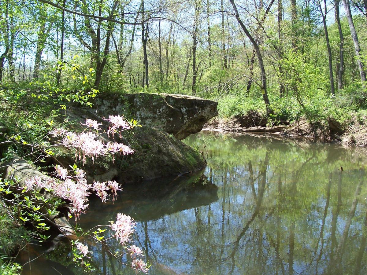 Hollow Rock Nature Park