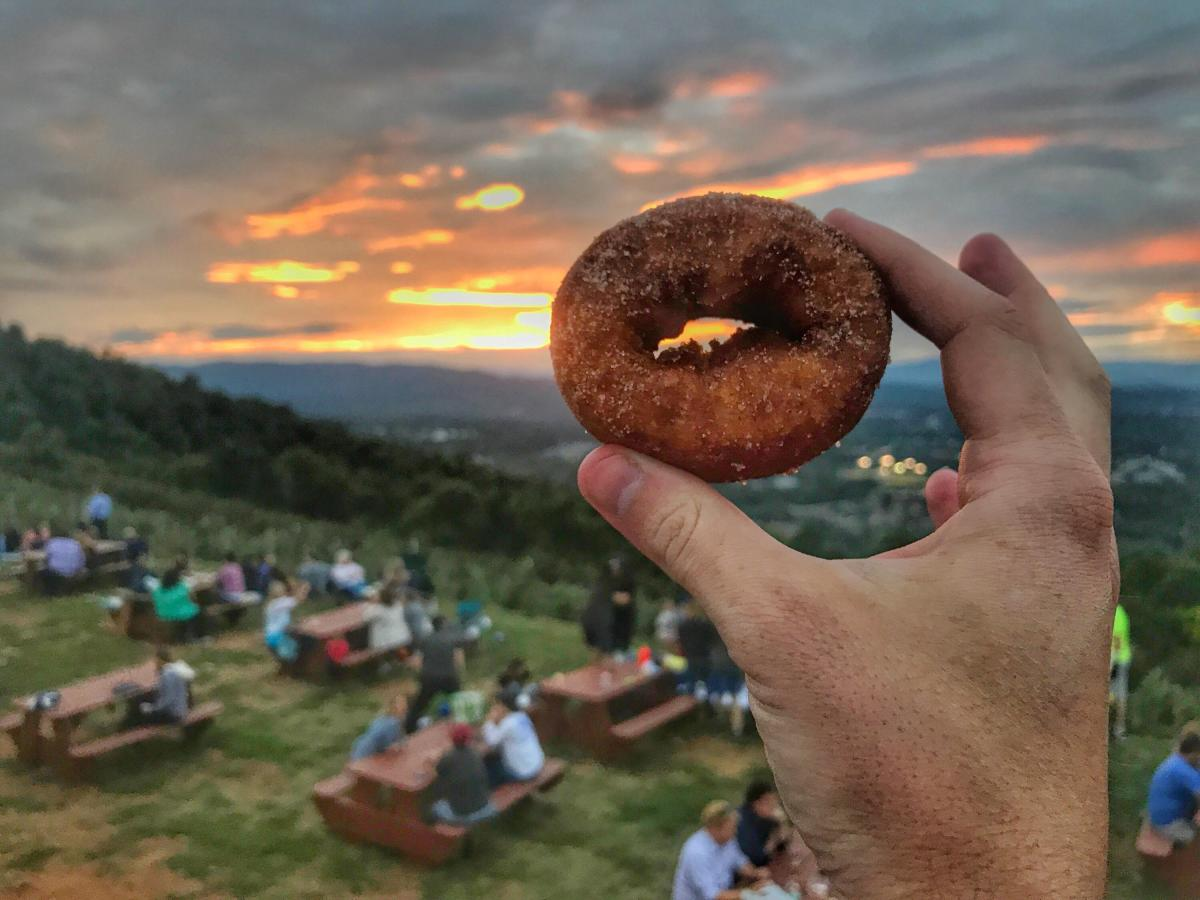 Apple Cider Donuts at Carter Mountain Orchard