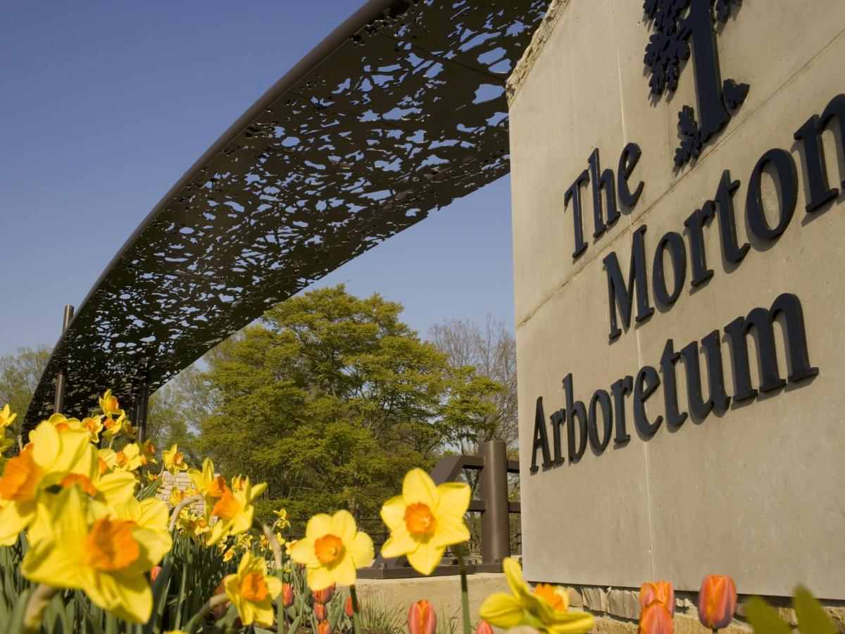 Route 66 The Morton Arboretum