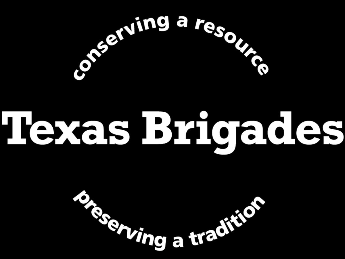 Texas Brigades