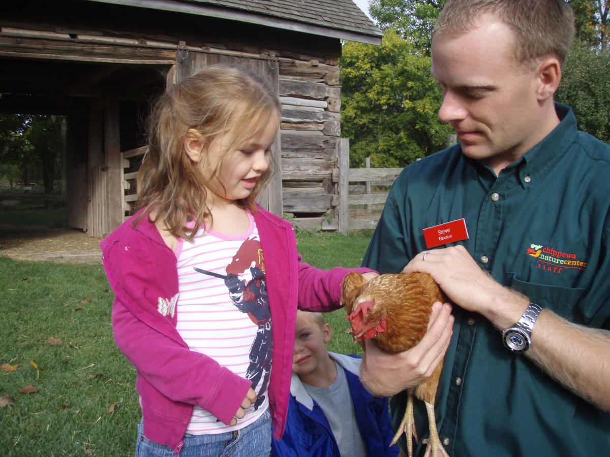 Homestead Farm at Chippewa Nature Center staff member showing kids a chicken