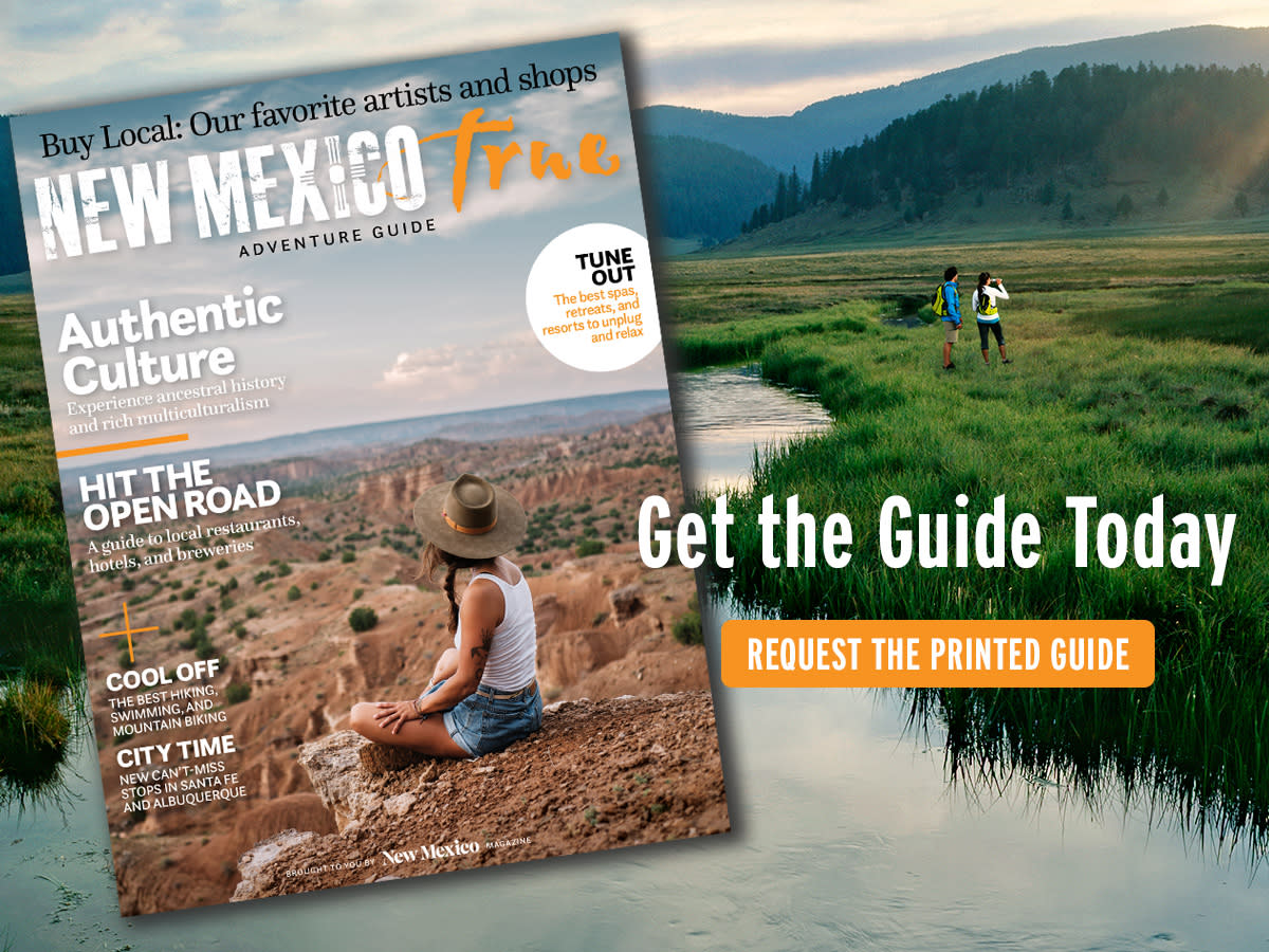 Order the 2019 Adventure Guide Today