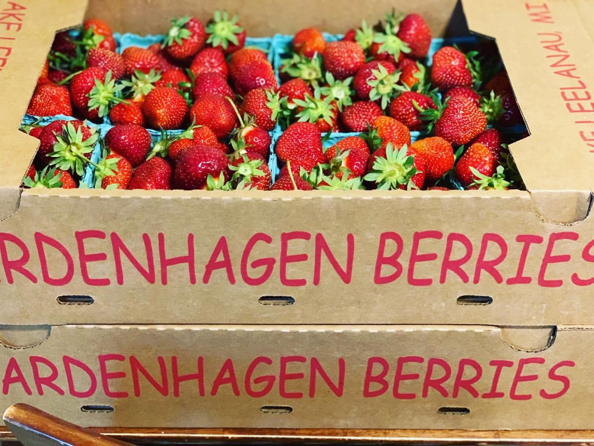 Strawberries from Bardenhagen Berries