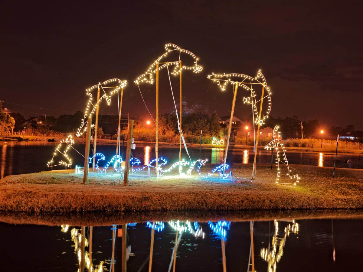 Christmas lights outlining the shape of a dolphin jumping out of the water at the Island of Lights festival