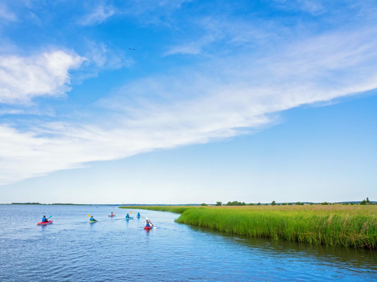 4x3 Zeke's Island Kayaking