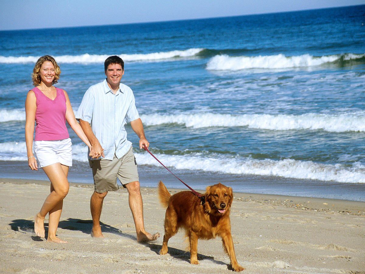 Copy of Couple with Dog - beach GI-210