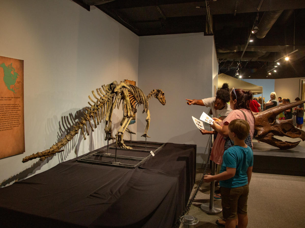 Cape Fear Museum of History and Science Dinosaur Exhibit