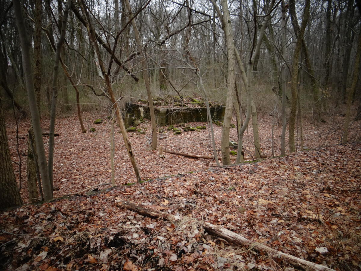 Delhass Woods Small Ruin