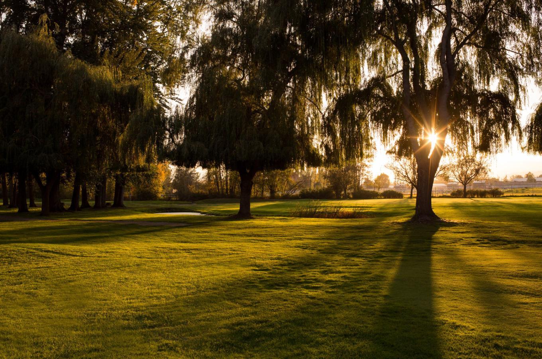 Mission Creek Golf Course Image 7