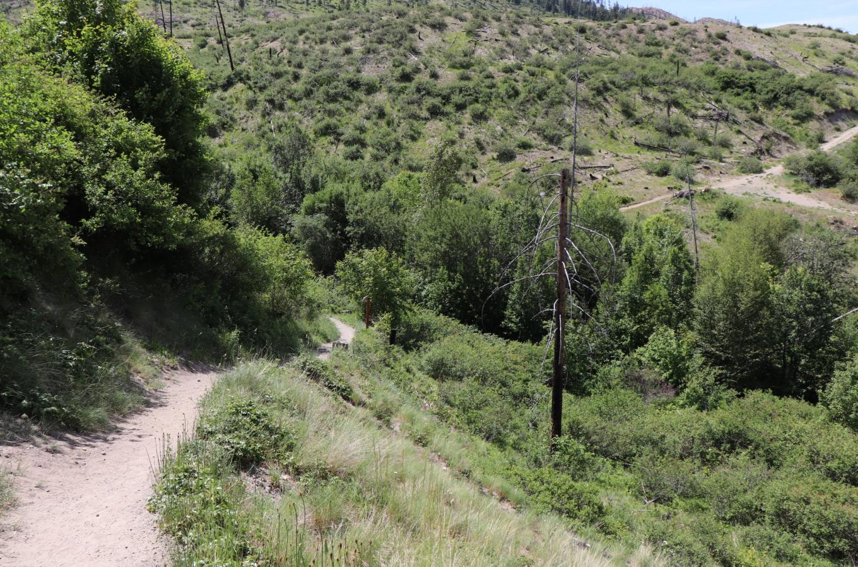 Lebanon Creek Greenway Regional Park Image 3