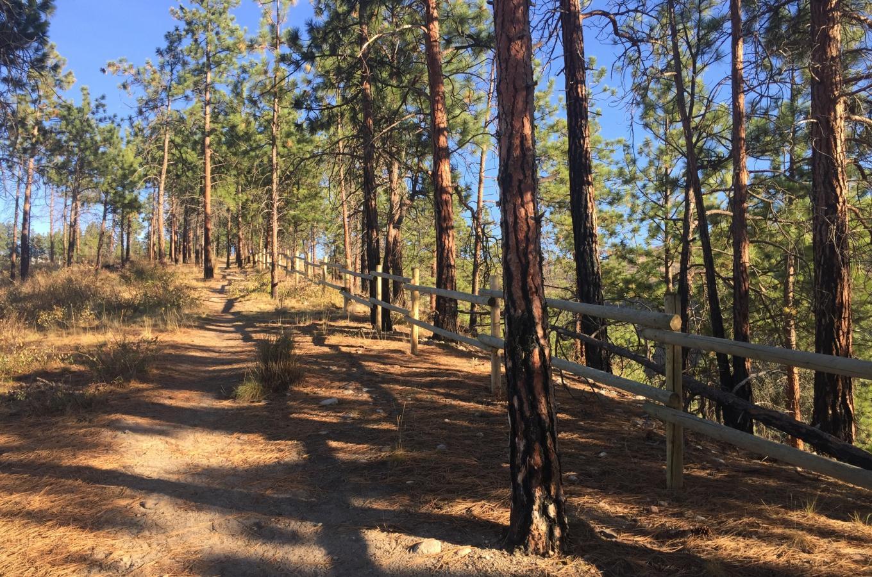 Cedar Mountain Park 3