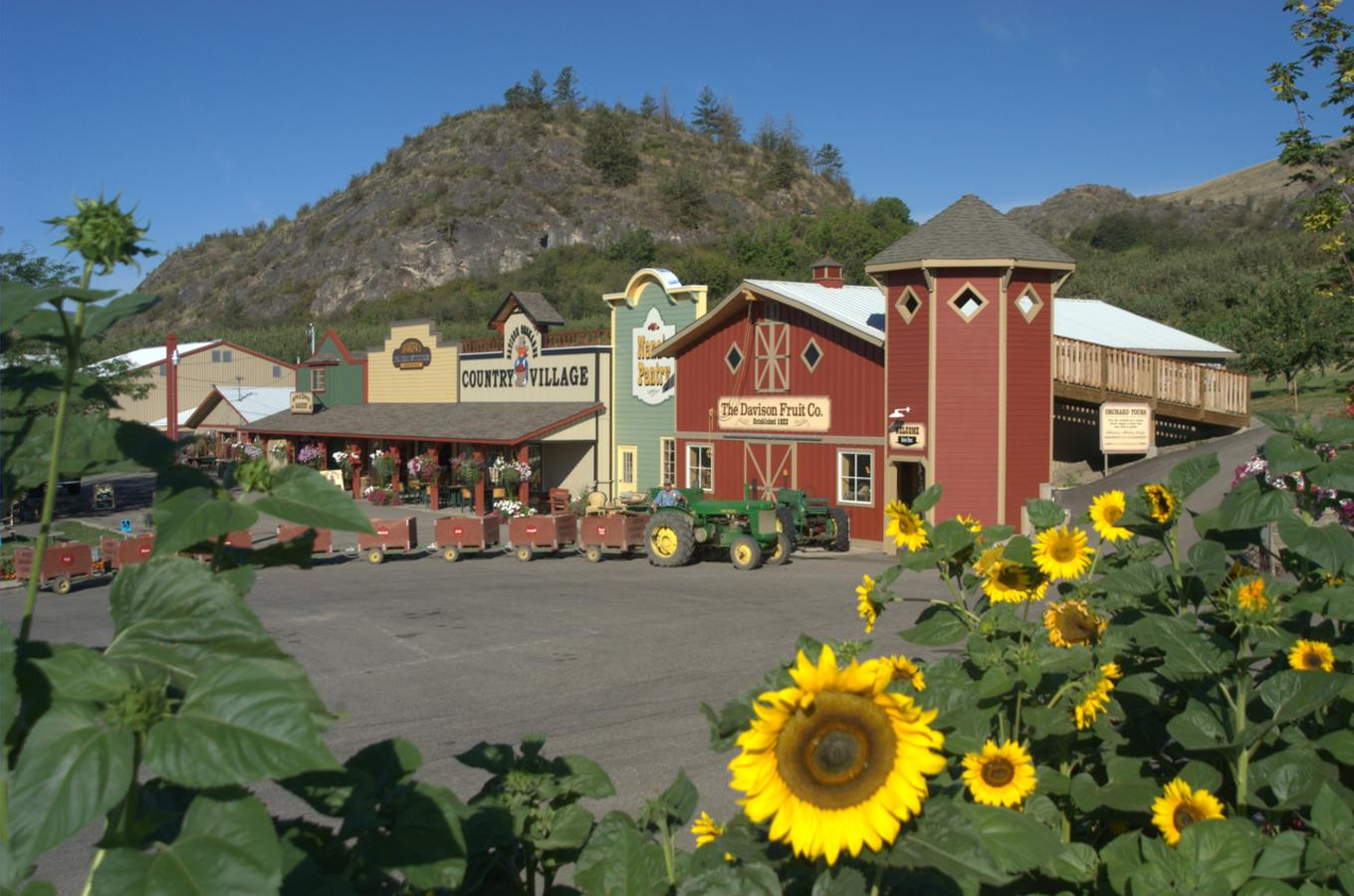 Davison Orchards Image