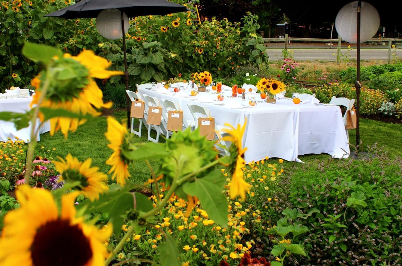 Bonfire Culinary Garden