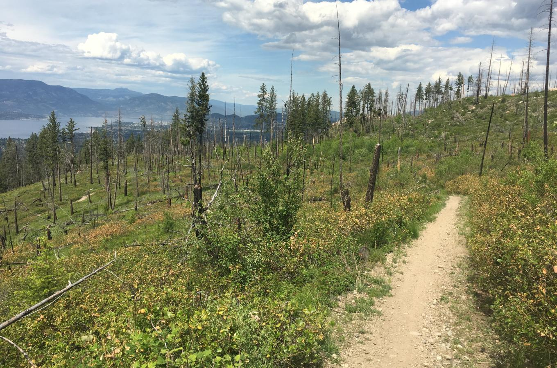 Myra-Bellevue Provincial Park 3