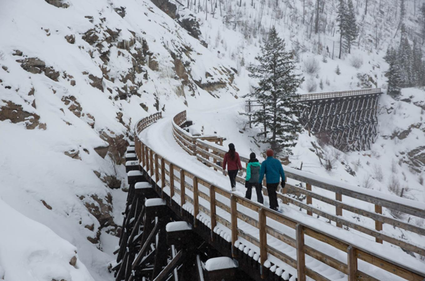 Winter Trestles with Snowshoes