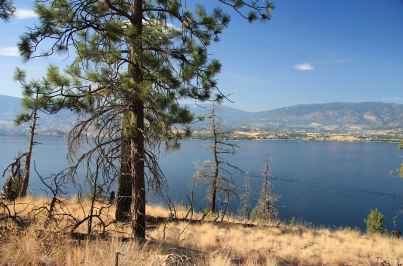 Okanagan Mountain Park