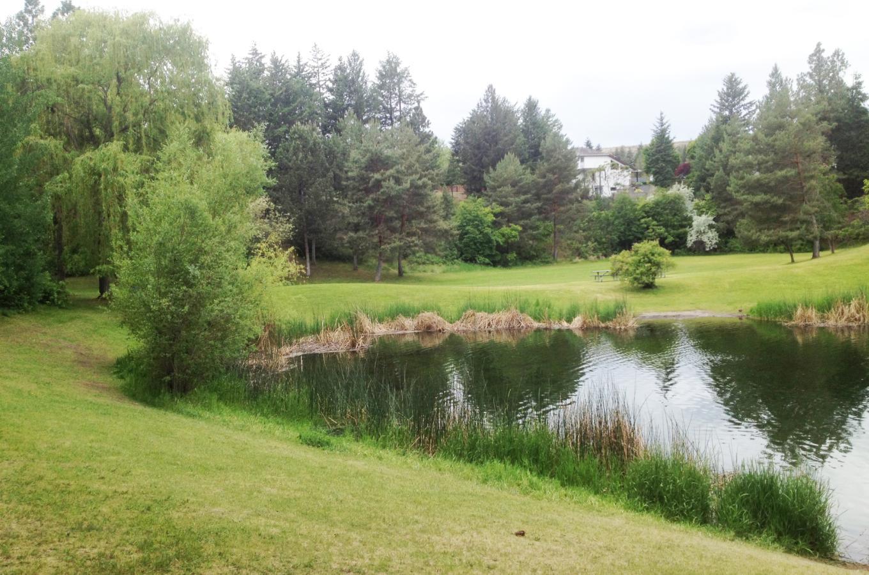 Shannon Lake Regional Park 3