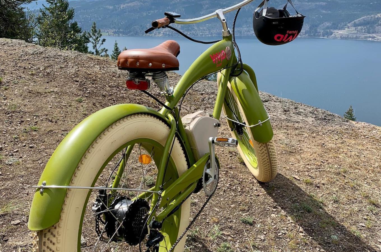 E-bike Image 1