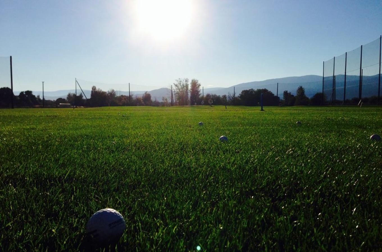 grassy balls