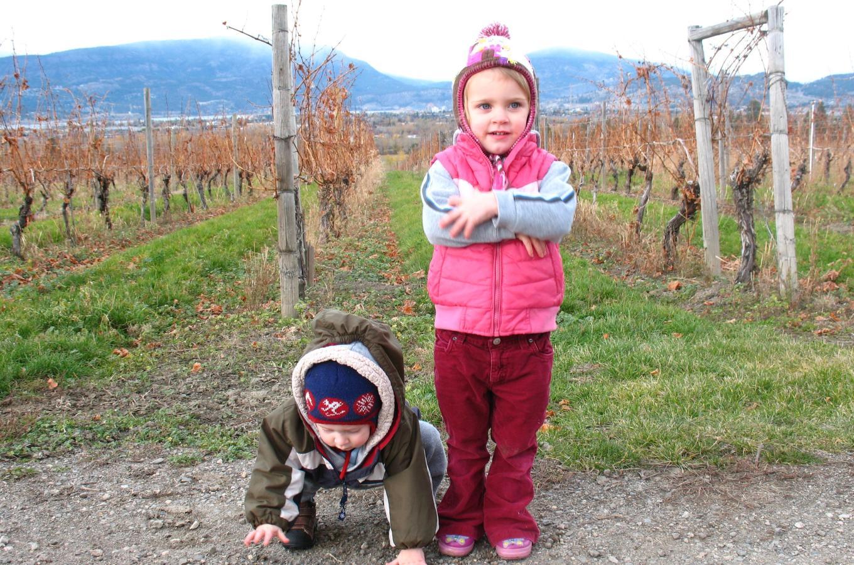 Children in vineyard