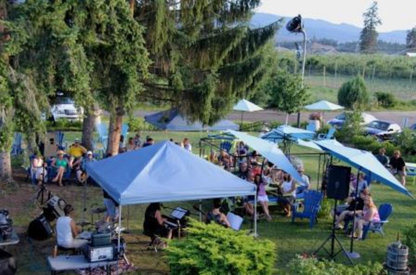 Music in the Picnic Area