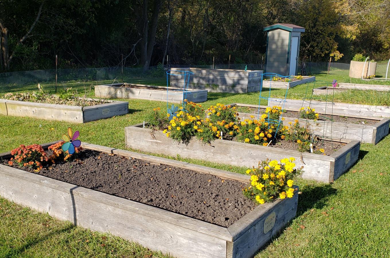 Prairie Springs Park Community Garden-fall