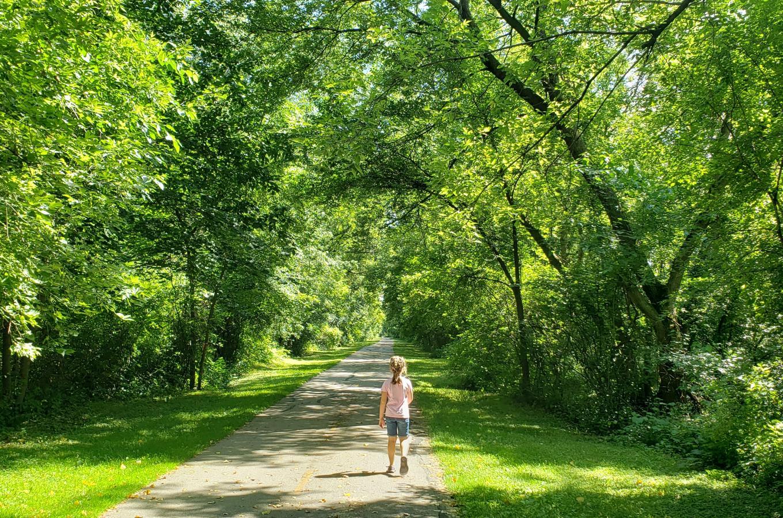 Bike Trail in Summer