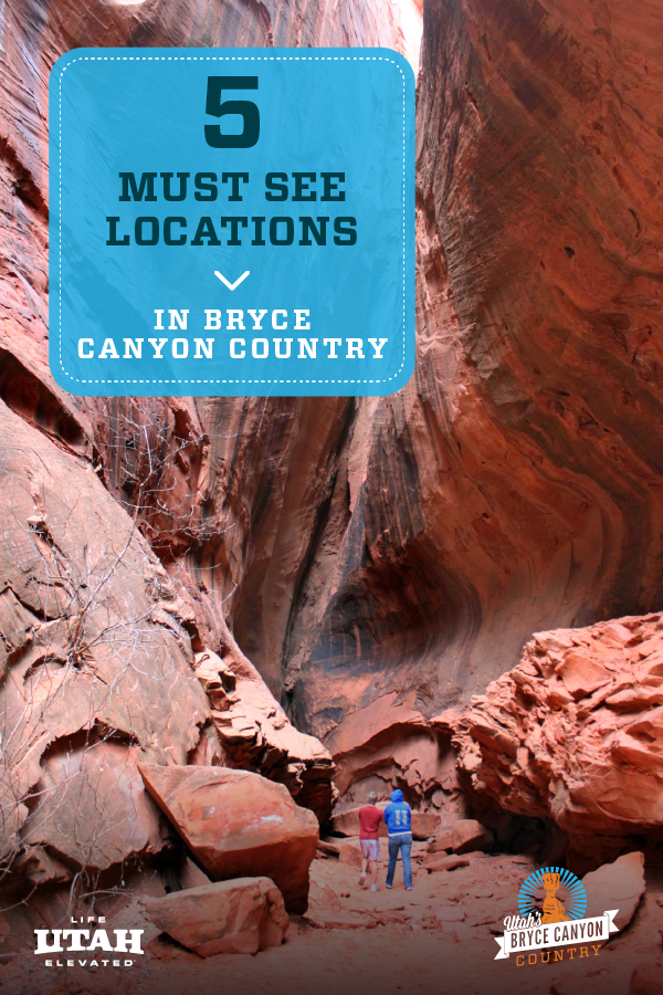 Don't miss these 5 must-see locations in Bryce Canyon Country! These are family-friendly Utah locations that are great for either day trips, road trips or even weekend getaways! Locations include Bryce Canyon National Park, Escalante, and many others!