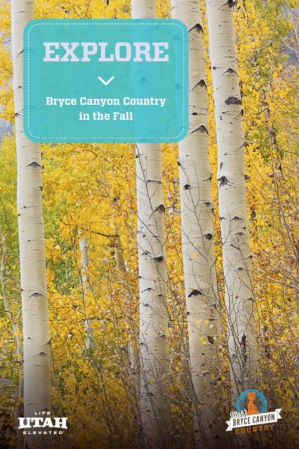 Visiting Bryce Canyon during the Fall time is an excellent way to take advantage of the end-of-season rates and experience the trails with fewer day-trippers. Here's how to get to this National Park, where to stay in Bryce Canyon, things to do in and around Bryce Canyon National Park and more!