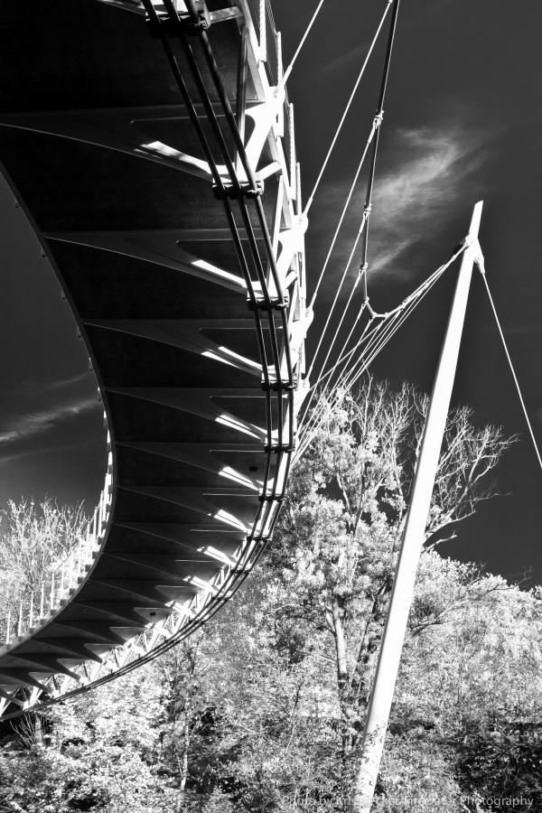 Liberty Bridge Black and White