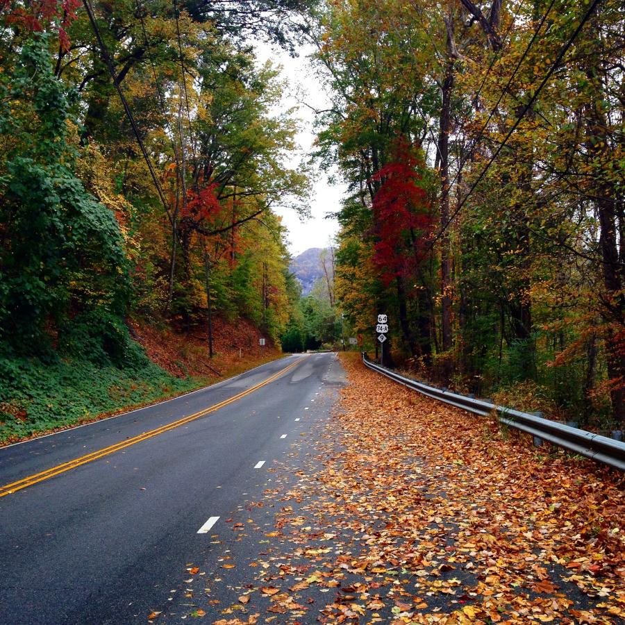 Scenic driving tour with fall color canopy
