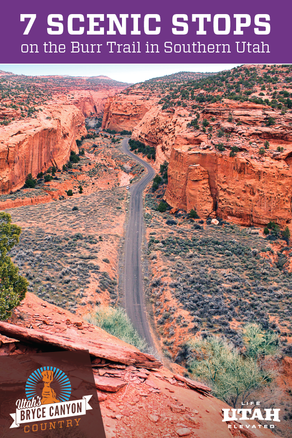 Read about 7 scenic stops on the Burr Trail that will leave you speechless. Southern Utah. This article includes lodging options as well. #bucketlist #adventuretravel