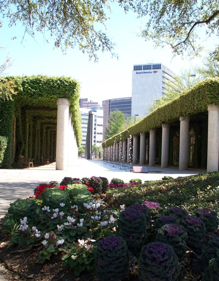 Ivy covered walkways at Wortham Park in Houston