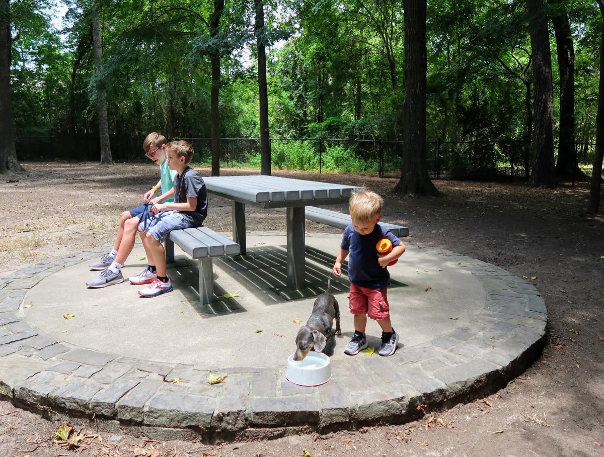 Terramont Dog Park