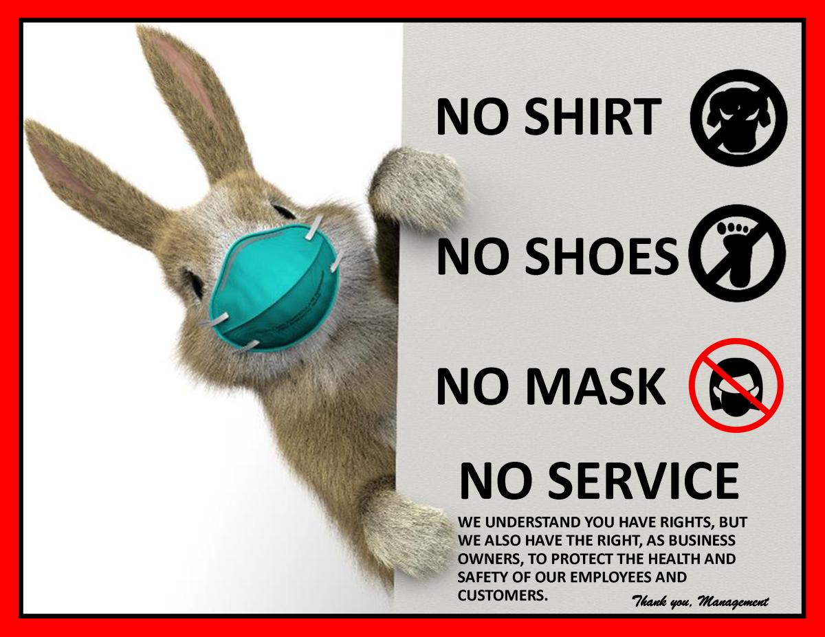 Bunny No Mask No Service