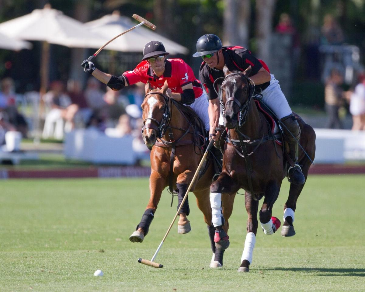 Two individuals playing polo