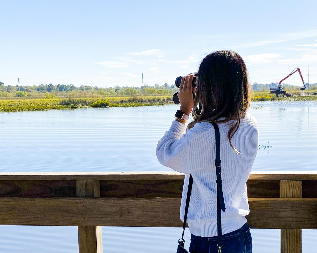 Copy of birdwatching