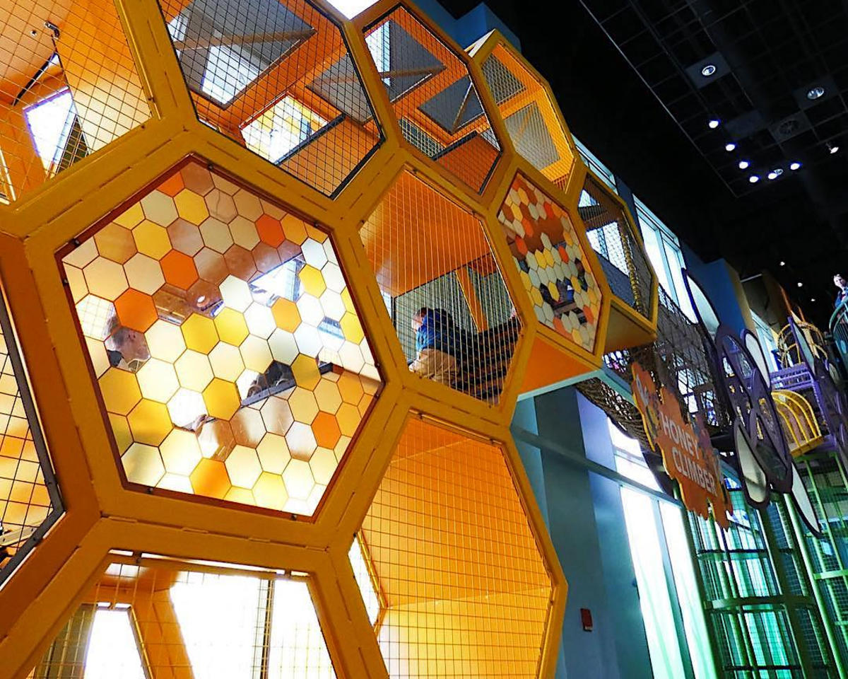The Honey Climber at The Discovery Gateway Children's Museum