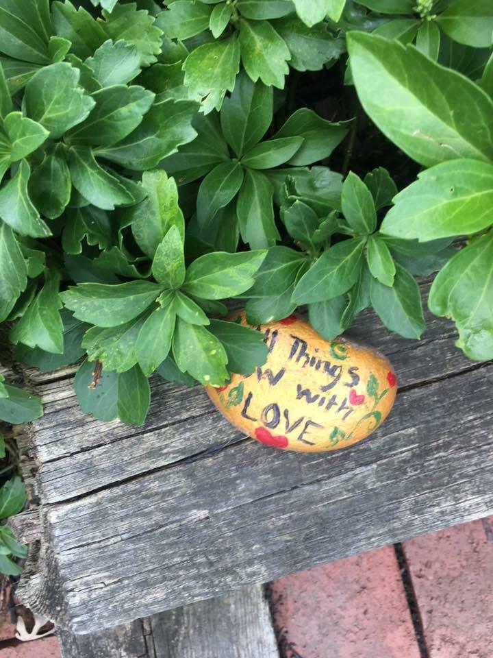 Painted rock hidden in plant