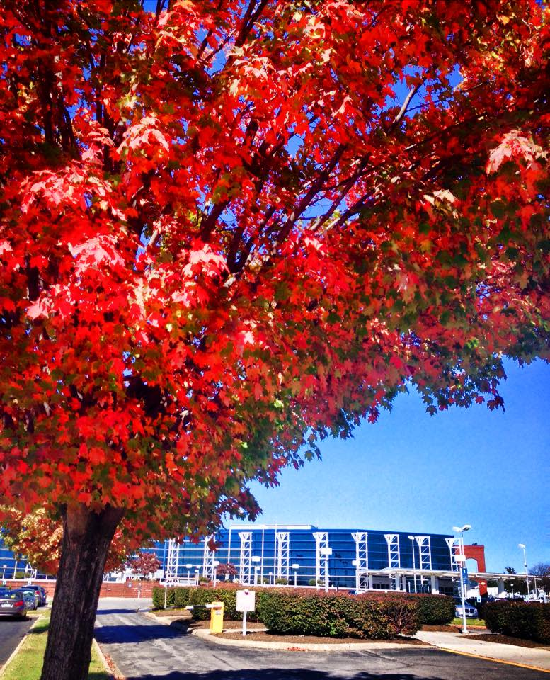 Roanoke-Blacksburg Regional Airport - Fall Photo
