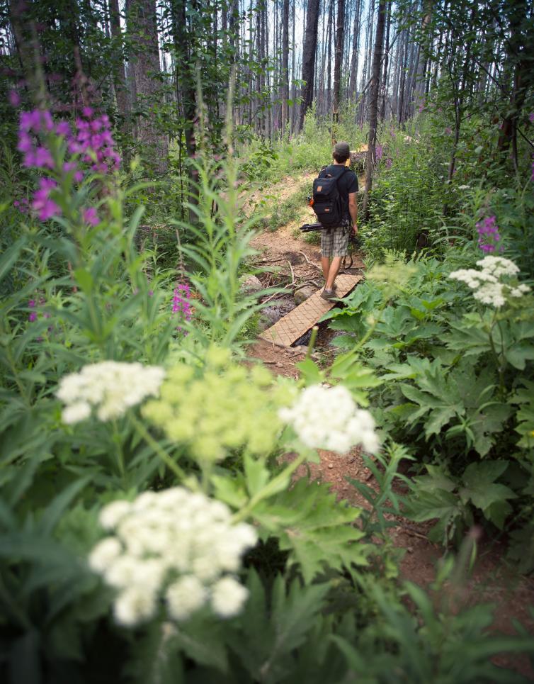 Christie Falls Hike