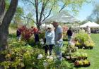 Hudson Valley Garden Fair