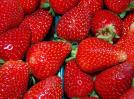Owego Strawberry Festival, June 19-20!
