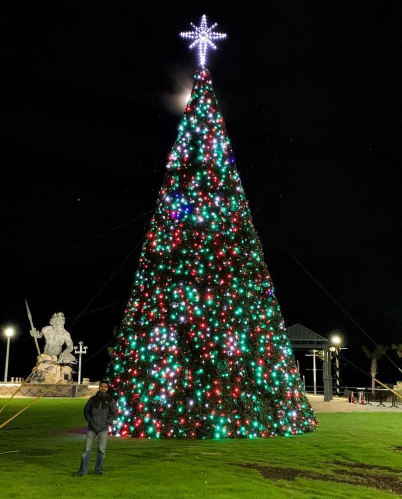Neptune Park Christmas Tree